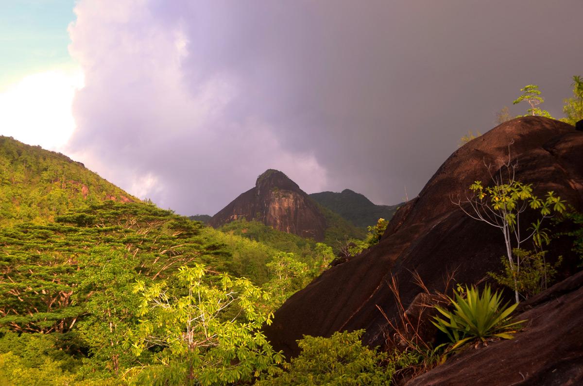 Mahe Anse Major Trail View