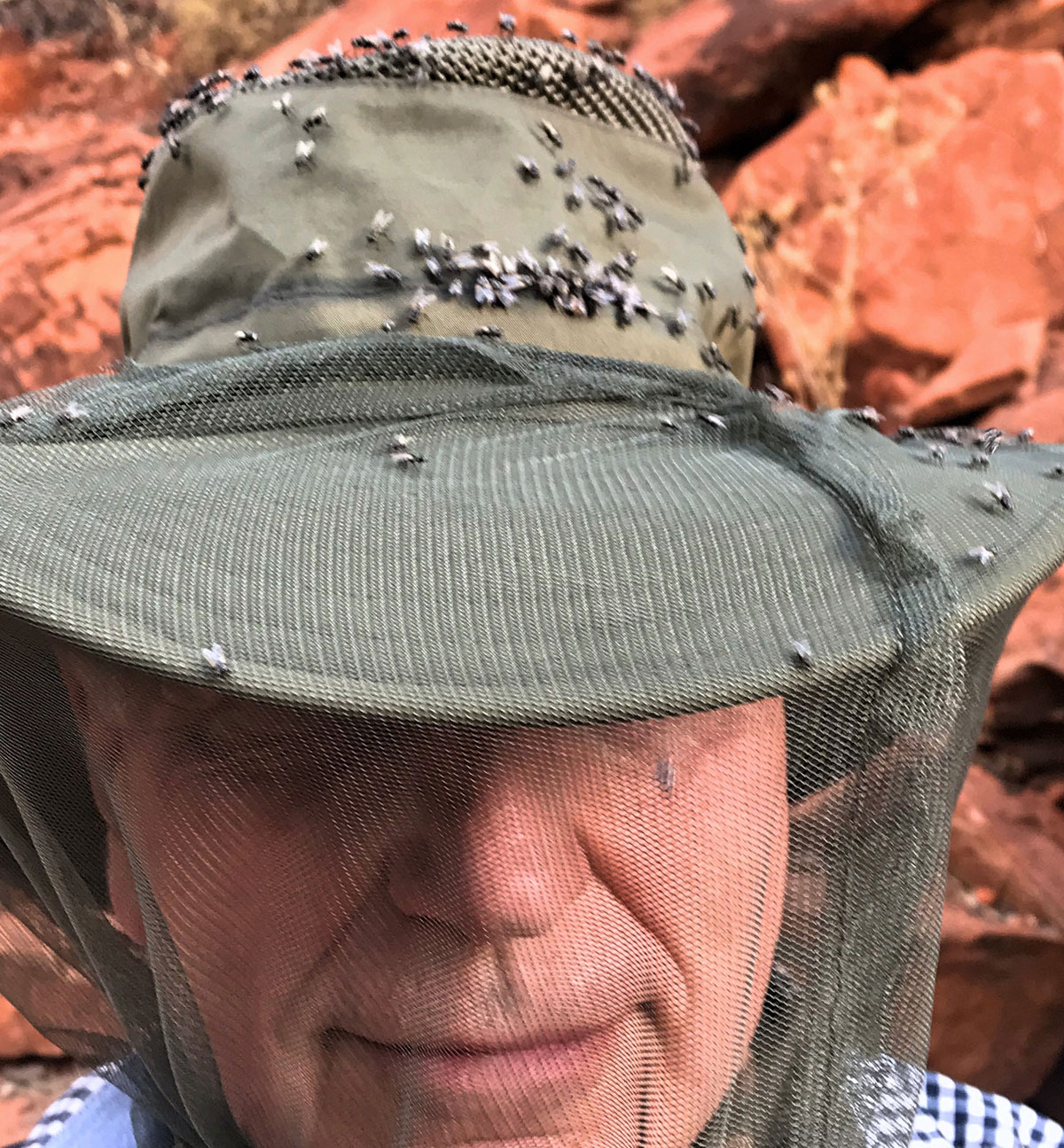 Australian Outback Insect Net
