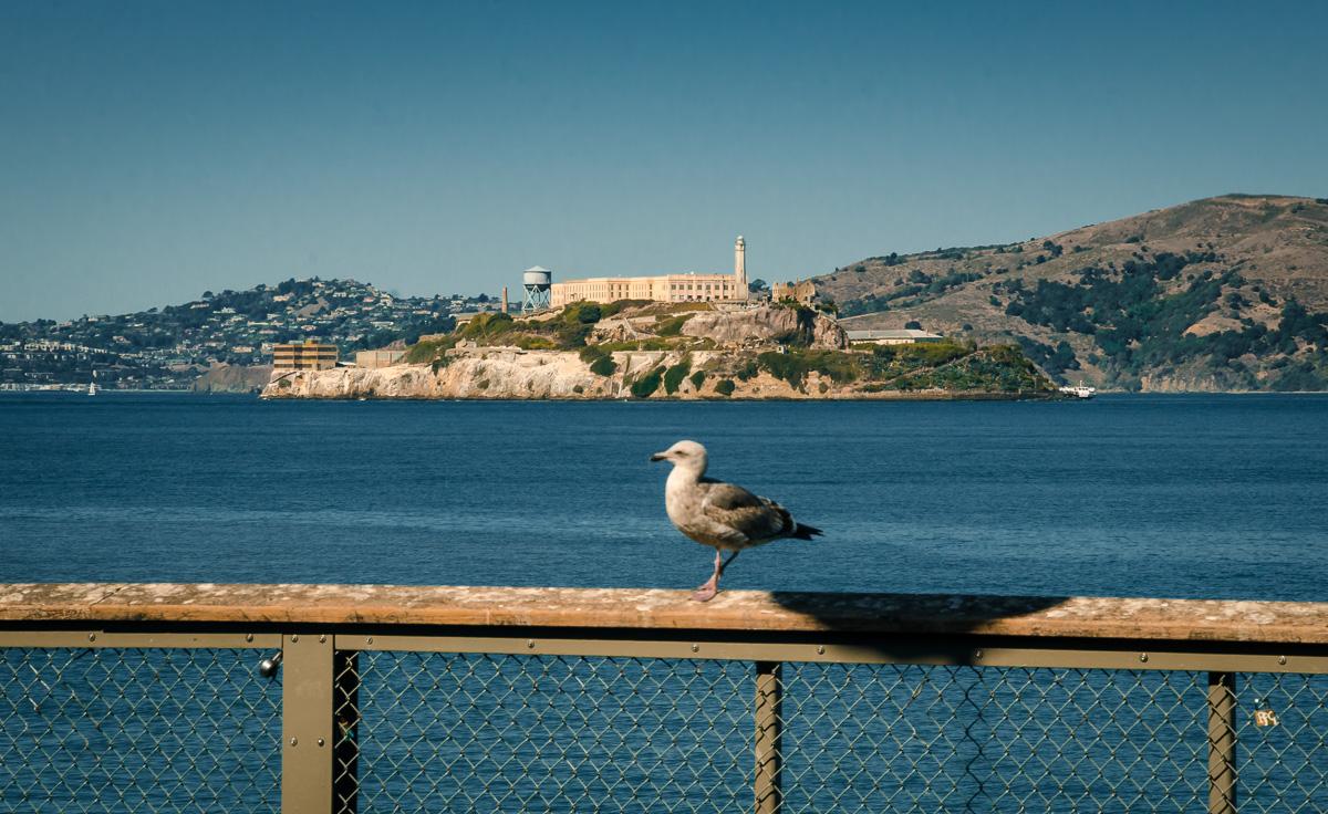 Alcatraz Penitentiary