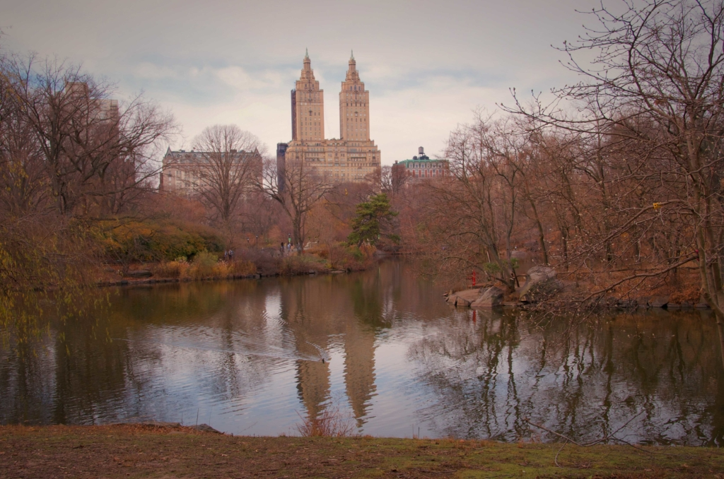 The Lake - Central Park