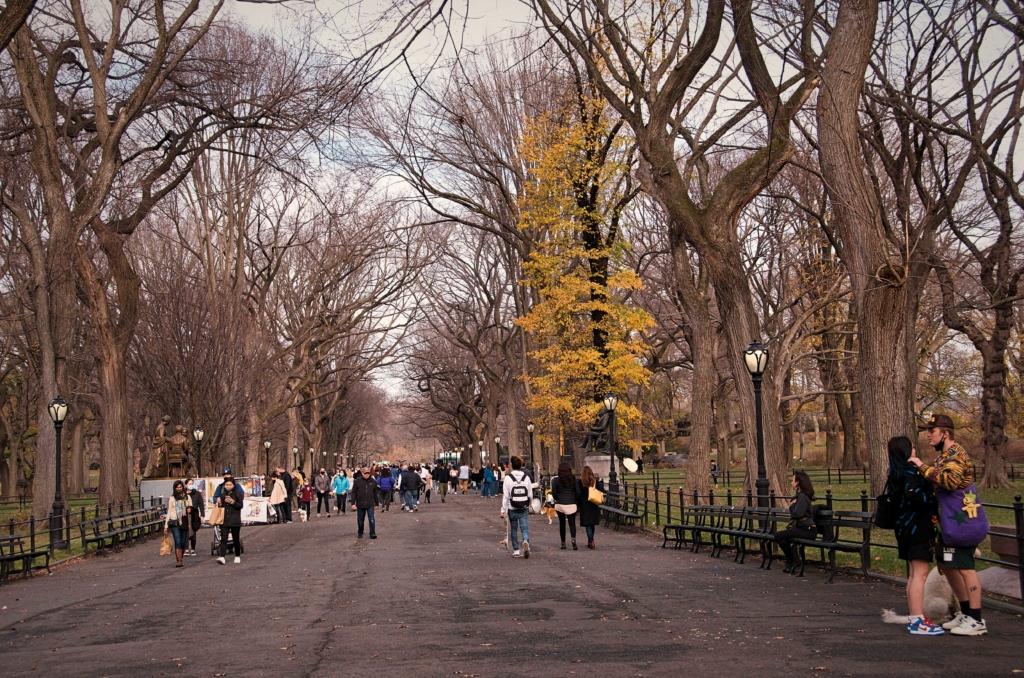 Literary Walk Central Park