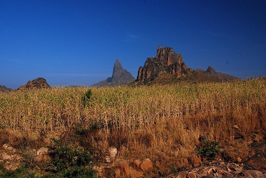 Mandara Mountains - Maize _ Mountains