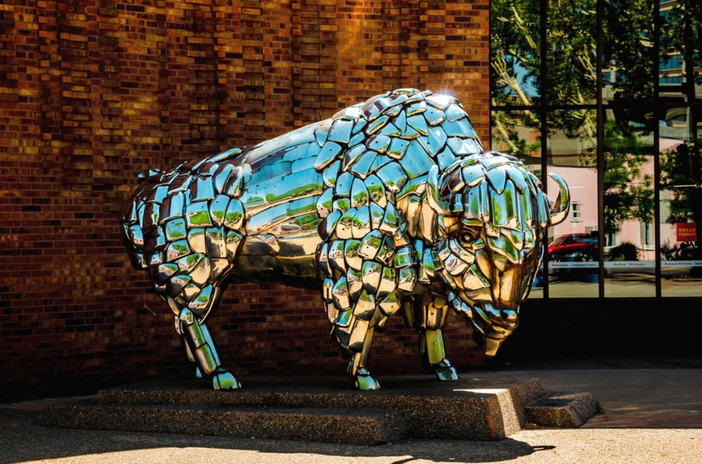 Chrome on the Range Buffalo - Grand Junction CO